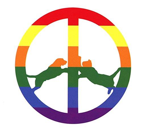 Rainbow Edition by Hype Williams