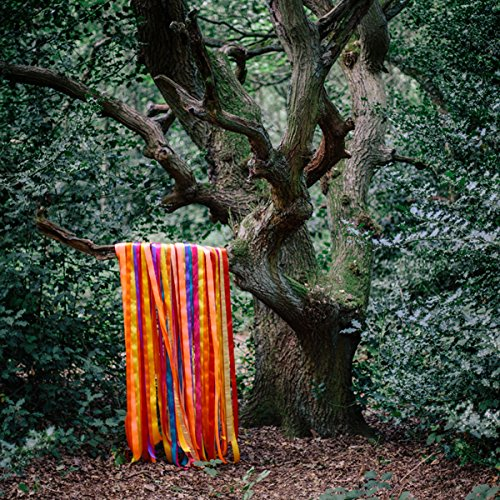 The Animal Spirits by James Holden & the Animal Spirits