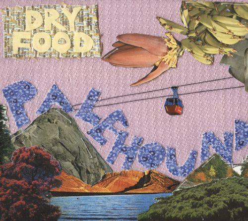 Dry Food by Palehound