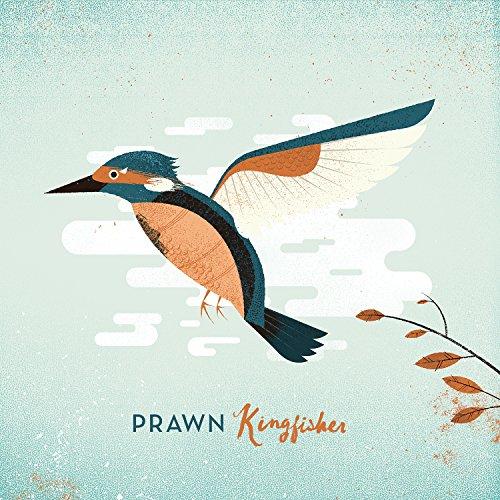 Kingfisher by Prawn