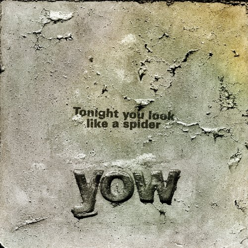 Tonight You Look Like a Spider by David Yow