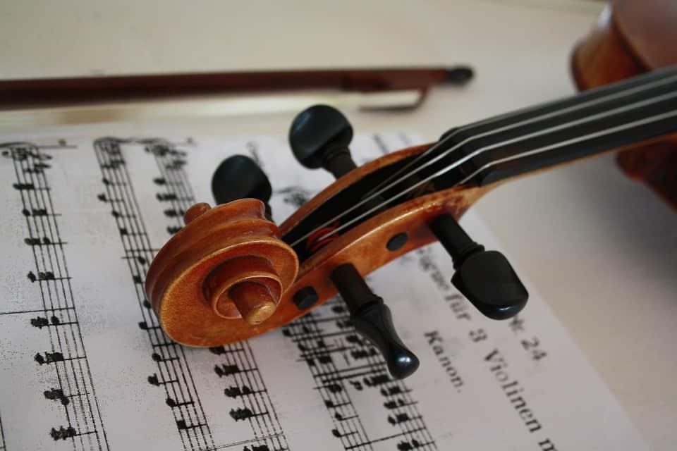 Buy student violins