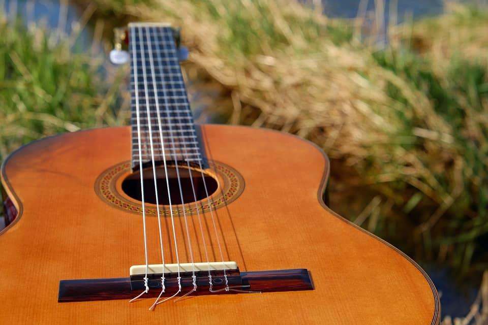 Cedar wood guitar