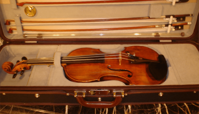 classic collection shiny violin with case