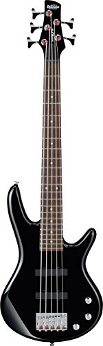 Ibanez 5-String Bass