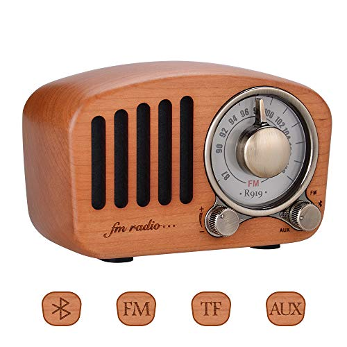 Qoosea Portable Radio FM Radio with Bluetooth Speaker