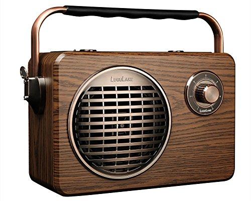 LuguLake Handheld Multi-function Bluetooth Speaker