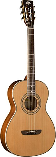 Washburn WP11SNS Parlor Series Acoustic Guitar