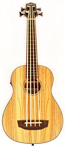 Hadean Acoustic Electric Bass Cut-Away