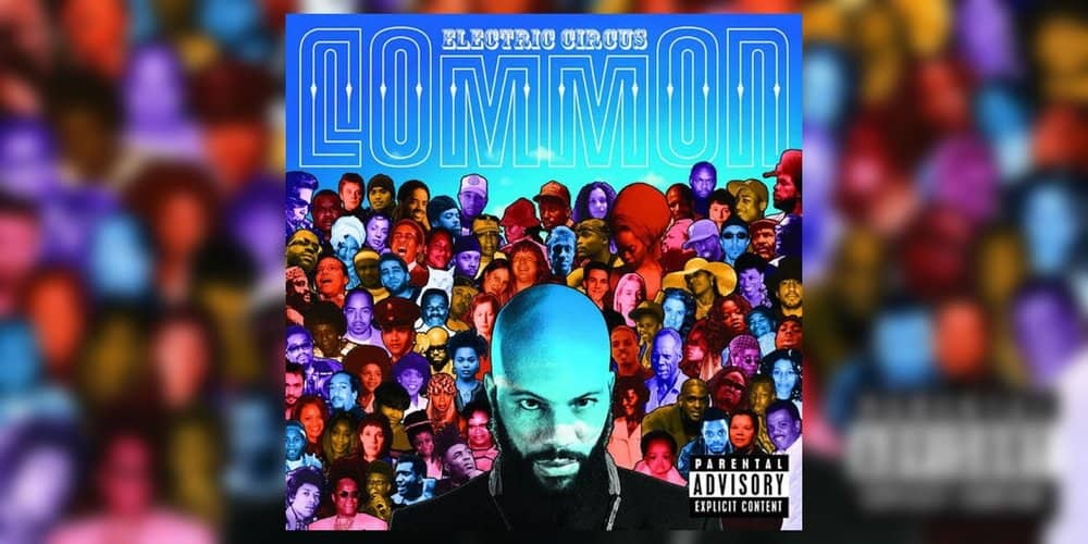 Albumism_Common