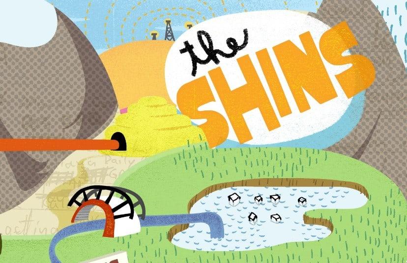 Shins-Chutes