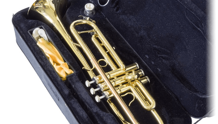 Trumpet on a case
